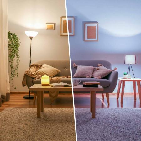 Bombilla LED Esférica E27 7,4W Equi.60W 806lm Raydan Home