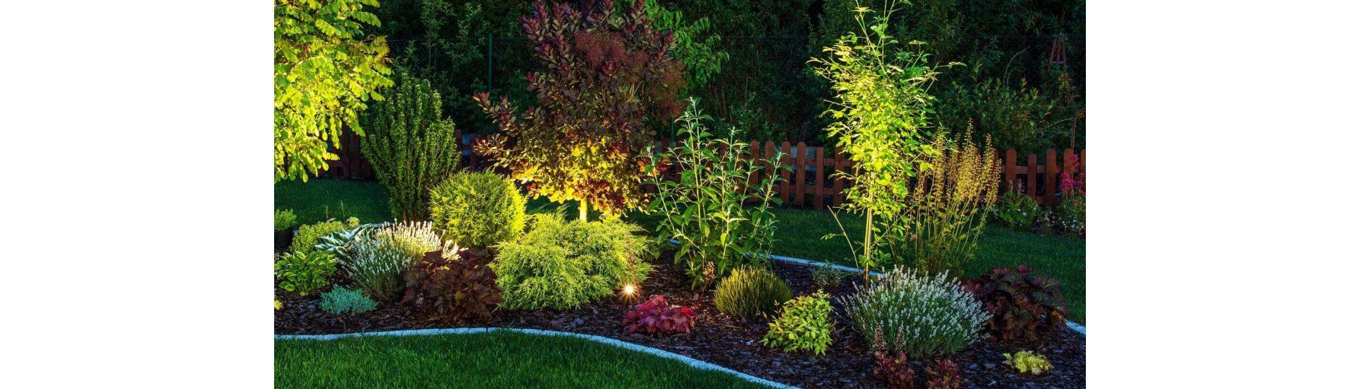 ¿Cómo iluminar un jardín en verano?