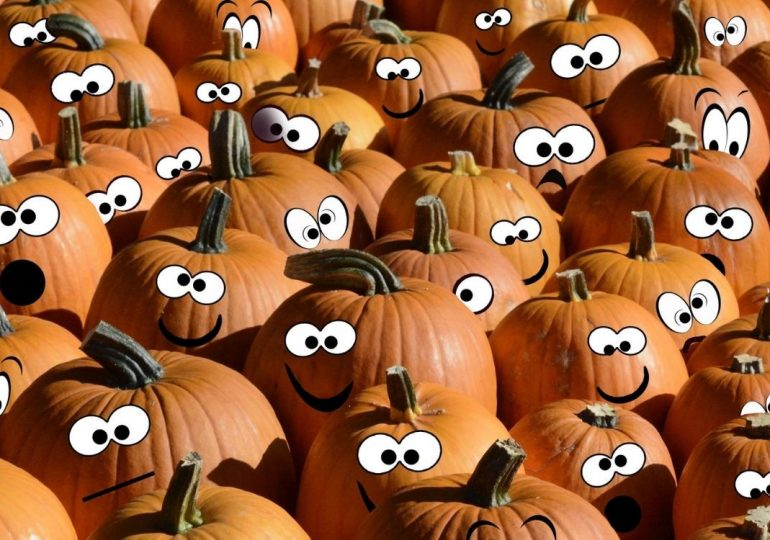 5 ideas para decorar calabazas en Halloween