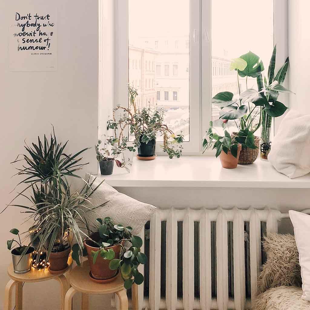 Decoración estilo Urban Jungle en hogar