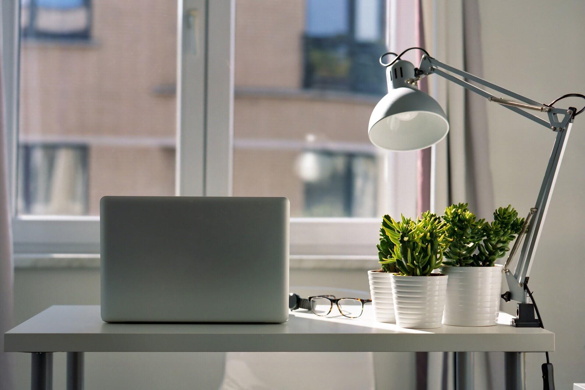 Decoración escritorio con plantas